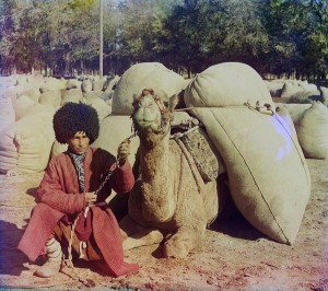 Turcomano e seu camelo, 1907-1915.